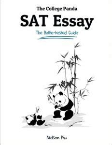 Why the Needs an Official Language Essay Example